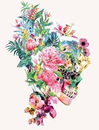 colorful floral skull illustrations by riza peker skull