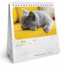 2018 easel desk calendar cat naps easel calendar 2018 calendar club uk