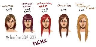 Hair Meme - hair meme by lexisss on deviantart