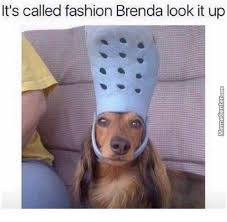 Brenda Memes - bad girl brenda memes best collection of funny bad girl brenda pictures