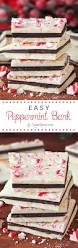 Easy Homemade Christmas Gifts by 25 Best Peppermint Candy Ideas On Pinterest Easy Diy Candy