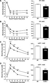 the c3a anaphylatoxin receptor is a key mediator of insulin