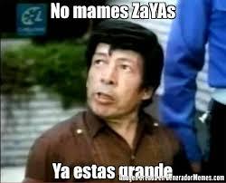 Alfonso Zayas Meme - memes de zayas memes pics 2018