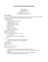 Resume Profile Summary Sample professional auditor and audit manager resume sample featuring
