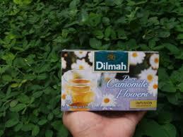 Teh Dilmah mengenal teh camomile lebih dekat lagi pursuing my bule