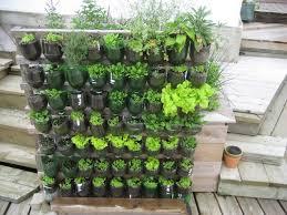 Urban Herb Garden Ideas - 4 diy and creative plastic bottles as a planter ideas 11 urban