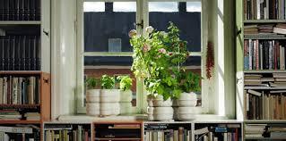 Urban Garden Room - a starter guide to urban gardening inhabitat green design