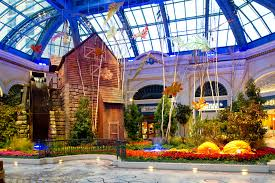 Botanical Gardens Bellagio by Captivating Colors Of Autumn Abound At Bellagio U0027s Conservatory