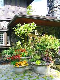 Patio Container Garden Ideas Landscaping With Potted Plants Landscaping And Outdoor Building