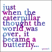quotable cards just when the caterpillar thought the world was greeting