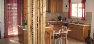 cuisine bambou cuisine bambou pivoine etc