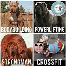 Crossfit Meme - bodybuilding powerlifting strongman crossfit meme on me me
