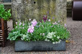 planting container gardens for spring dirt simple