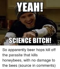 Science Bitch Meme - yeah science bitch meme generator net so apparently beer hops