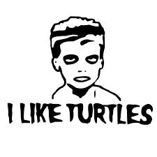I Like Turtles Meme - instant i like turtles troll sound button myinstants