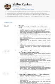 cio resume samples visualcv resume samples database