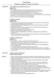 exle of a functional resume carrier resume sles velvet