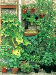 Small Garden Ideas Pinterest Small Garden Ideas Diy Vegetable Garden Ideas Vertical