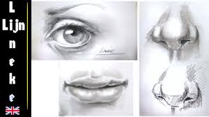 drawing the realistic eye nose and mouth step by step for