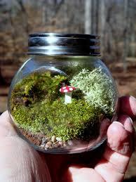 garden ideas for small spaces terrariums handmade talks