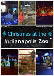 Zoo Lights Dates by Christmas At The Zoo Issmcatz