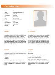 Sjabloon Cv Jobstudent gratis cv generator kleurrijke cv sjablonen cv voorbeeld