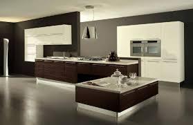 Kitchen Cabinets Design Ideas Kitchen European Kitchen Modern Wood Kitchen Cabinets Best