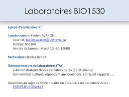 les heures de bureau laboratoires bio1530 courriel bureau bsc ppt télécharger