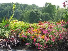 Virginia Botanical Gardens Meadowlark Botanical Garden In Vienna Virginia