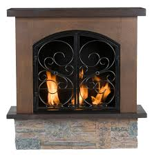 fresh perfect portable gas fireplace inserts 24905