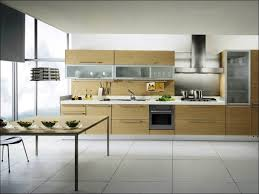 Top Kitchen Cabinet Brands Kitchen Kitchen Trends 2017 To Avoid 2017 Kitchen Cabinet Trends