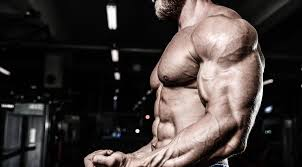 4 compound for bigger biceps and triceps fitness