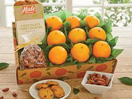 fruit gift boxes gourmet gift fruit boxes
