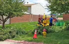 tree service in omaha millard elkhorn and bennington ne
