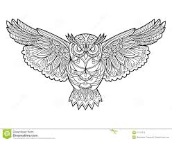 owl coloring book for adults vector stock vector image 67717613