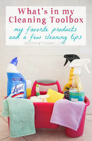 my favorite cleaning products ask anna