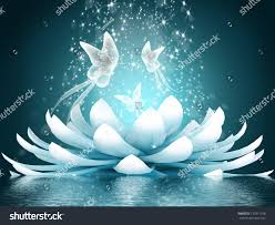 beautiful lotus flower stock illustration 137911106 shutterstock