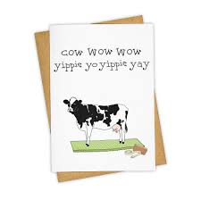 cow greeting cards special tay ham