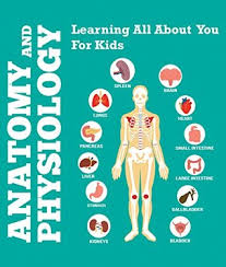 Anatomy And Physiology Games And Puzzles Crossword Anatomy And Physiology Learning All About You For Kids Human