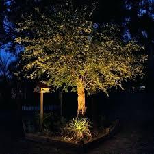 Landscape Light Timer Well Landscape Lights Flyingangels Club