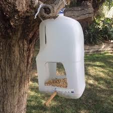 kids in adelaide easy diy bird feeders