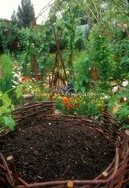 2124 best flowers for the garden images on pinterest