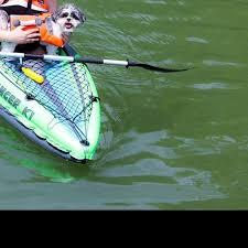 australian shepherd kayaking kayaking pack