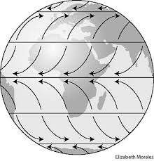 global wind activity patterns patterns kid