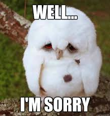 I Am Sorry Meme - well i m sorry no sleep heres sad owl quickmeme