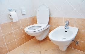 Why Dont Americans Use Bidets I Tried A Bidet To See If They Really Do Give Your A Squeaky
