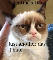 I Hate Valentines Day Meme - 17 valentine s day meme cards