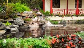 spring flower shows and festivals in new york state