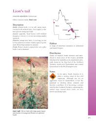 queensland native plants booktopia plants of central queensland identification and uses