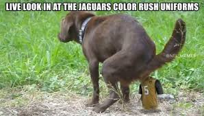 Jaguars Memes - jaguars cat poop yellow color rush uniforms get absolutely crushed